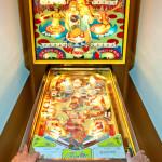 Christine Pallotta's father's pinball machine